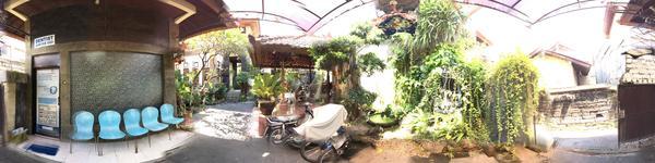Legian Dental - Legian, Kuta, Bali - Waiting area with beautiful nature view and funny talkative par